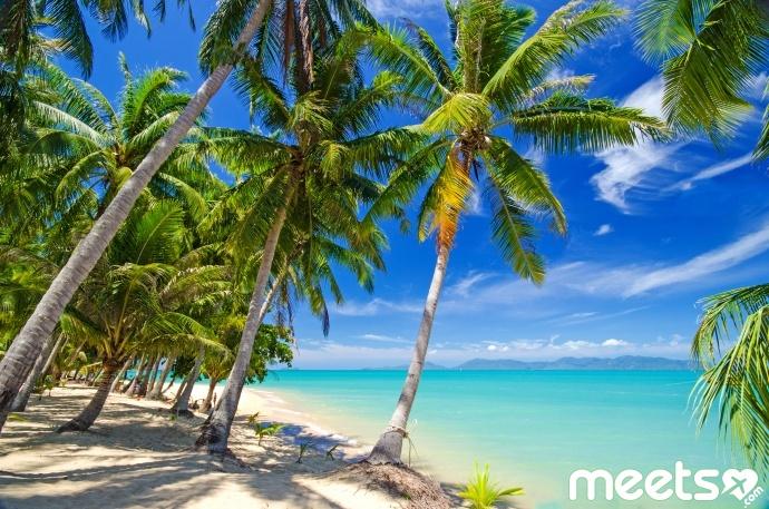 Traumurlaub an einsamem Karibischen Strand :)